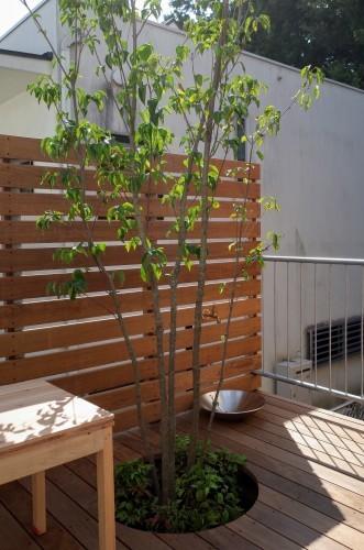 明野設計室さんのOPEN HOUSEに初参加 二子玉川の住まい_d0004728_16492644.jpg