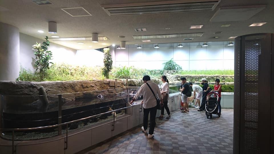 東山動植物園ナイトズー2019 初日!_f0373339_00271557.jpg
