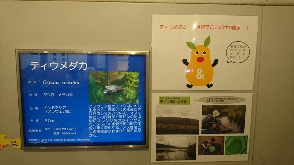 東山動植物園ナイトズー2019 初日!_f0373339_00271562.jpg