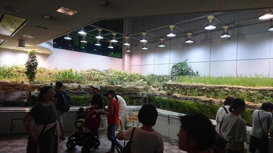 東山動植物園ナイトズー2019 初日!_f0373339_00271582.jpg