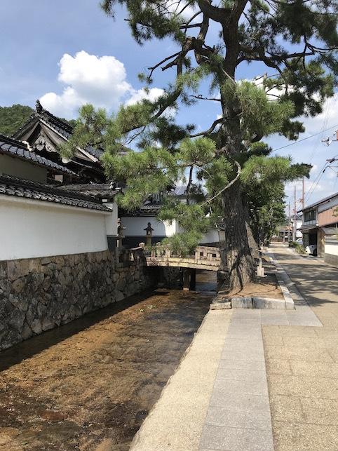 夏の思い出「竹田城跡」(1)_f0134963_19400052.jpg