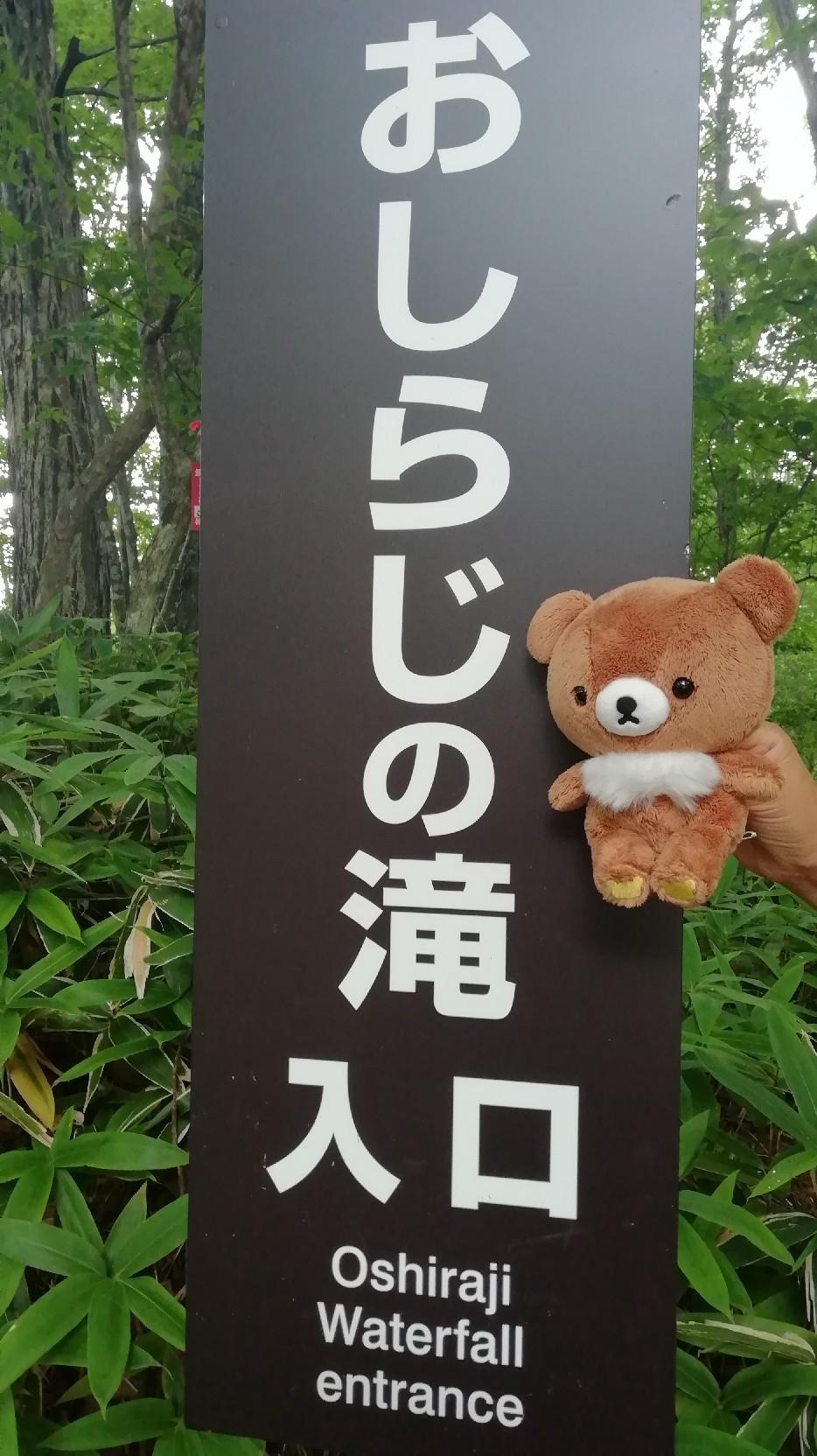 ★コグマ旅 in 栃木県 ★_f0351775_20095422.jpg