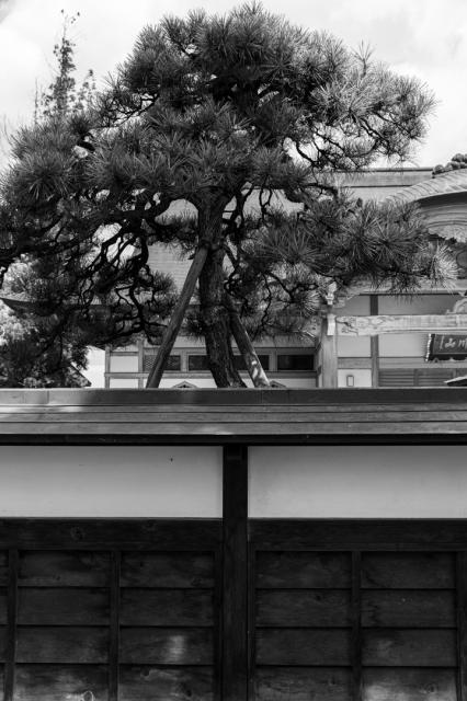 寺町の道端の風景_a0158797_00442752.jpg