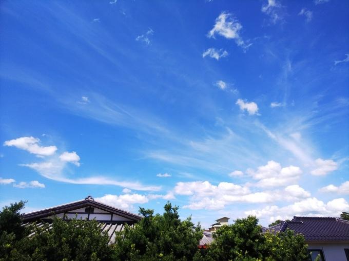 夏の思い出     231_b0239402_16012998.jpg
