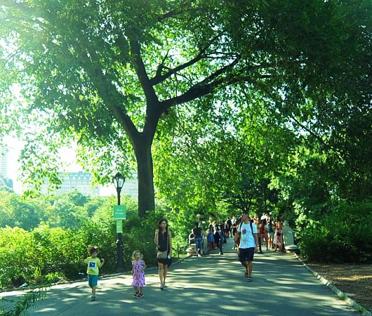 夏のセントラルパーク、美しい小橋、ボウ・ブリッジ(Bow Bridge)に広がる笑顔_b0007805_04021142.jpg