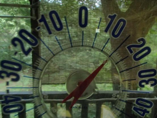 最低気温と最高気温_f0064906_16060727.jpg