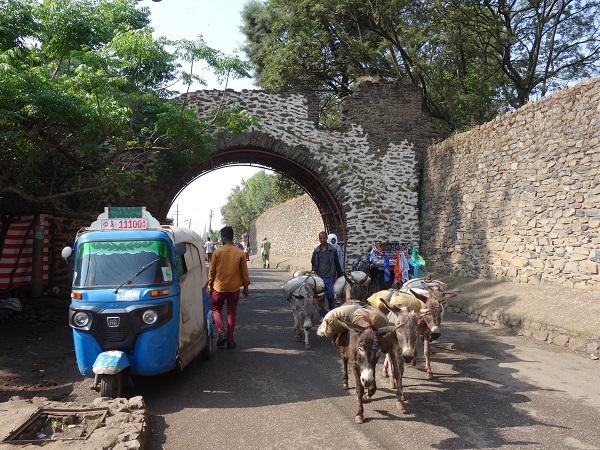 ファジル・ゲビ、ゴンダール城を訪問してみました_d0360509_15575192.jpg