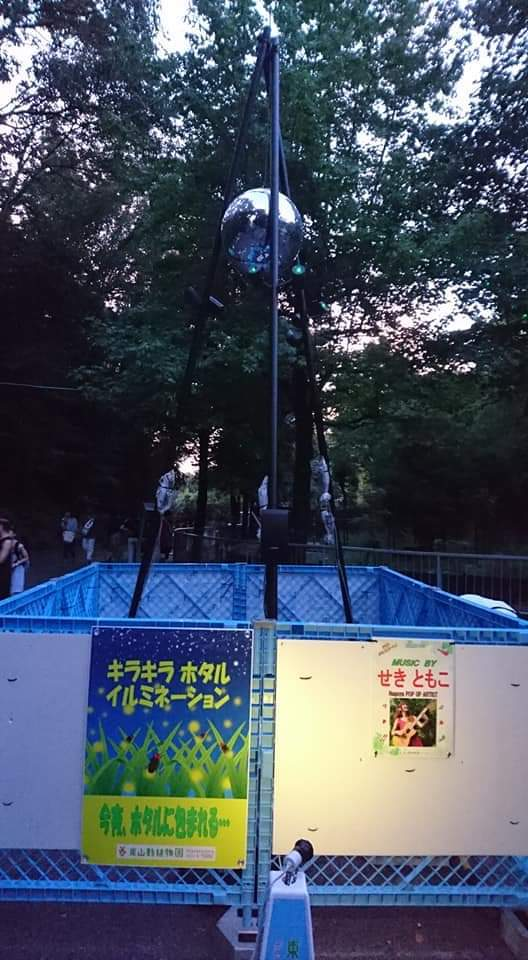 東山動植物園ナイトズー2019 2日目!_f0373339_01152805.jpg