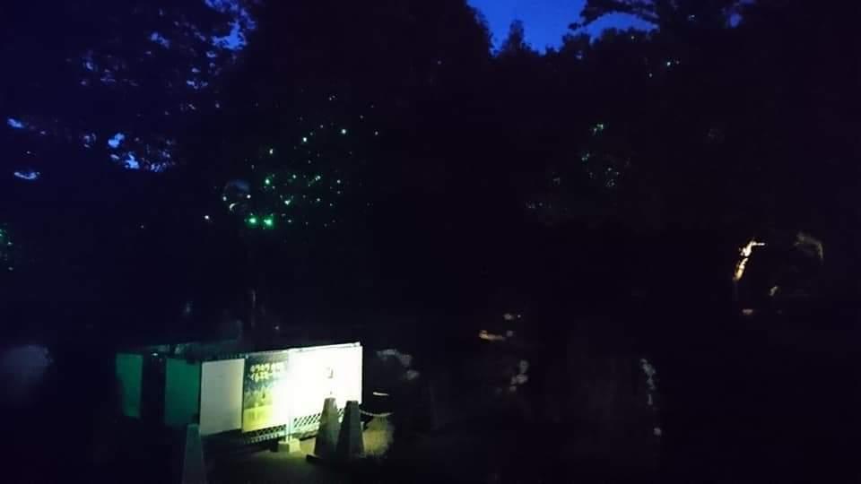 東山動植物園ナイトズー2019 2日目!_f0373339_01154329.jpg
