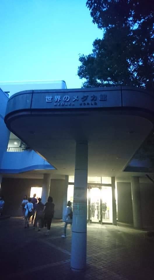 東山動植物園ナイトズー2019 2日目!_f0373339_01154475.jpg