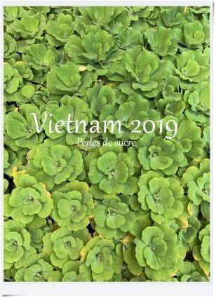 ベトナム旅行記 2019 その3_f0199750_11394373.jpg