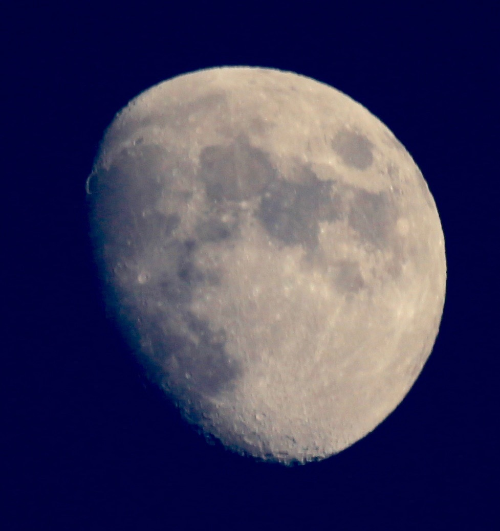 ペルセウス座流星群 。。。 ! !_a0248459_13235523.jpg