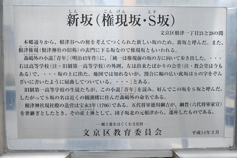 東京の坂道 #37-1 S坂(新坂)_f0079061_18294027.jpg