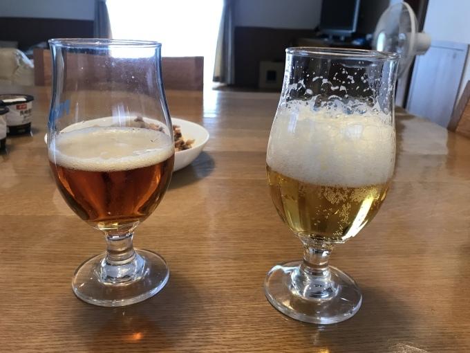 日本の夏はビールと冷やしうどん_b0100062_18501735.jpeg