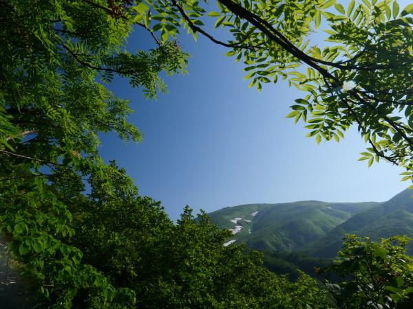 夏の月山 雄宝香(おたからこう)と月山湧水_a0351368_13254416.jpg