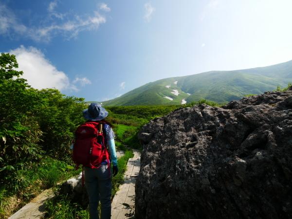 夏の月山 チングルマのお花畑_a0351368_22305393.jpg