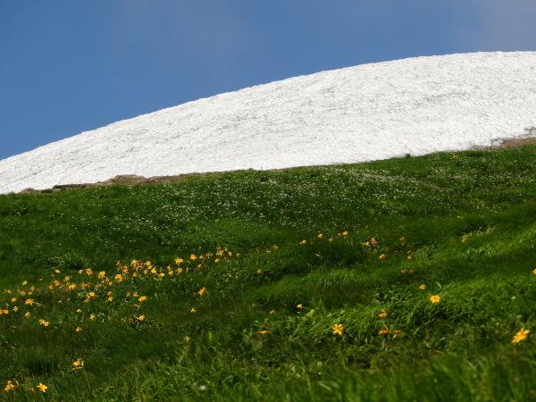夏の月山 雪渓を越えて_a0351368_23255812.jpg