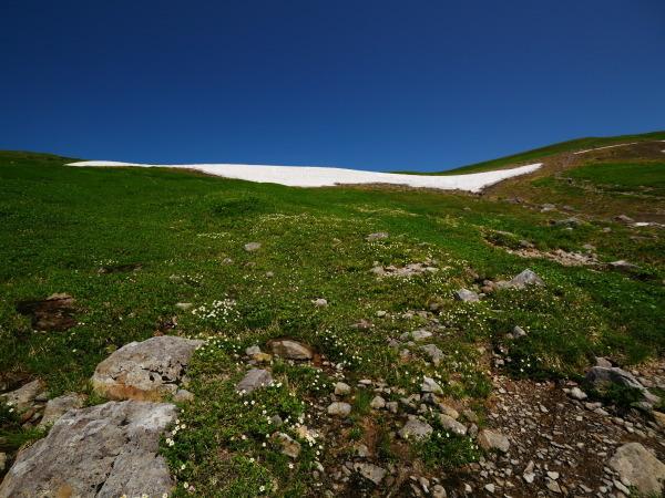 夏の月山 雪渓を越えて_a0351368_23333386.jpg