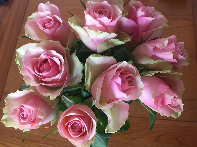 お祝いプレゼントとオバサンの習性_a0123372_07201688.jpg