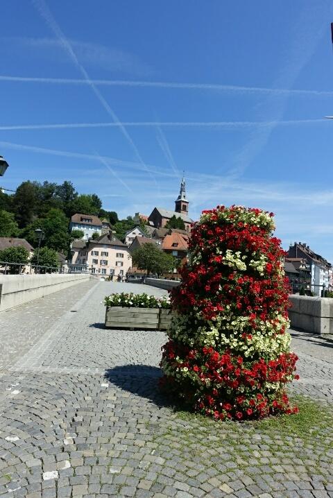 ライン川を挟んでドイツとスイス、、、ラウフェンブルグ_c0211876_05225015.jpg