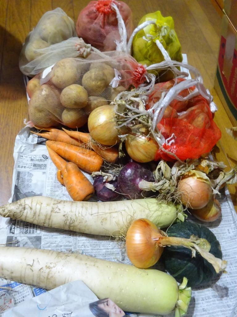 実家からの野菜2019 第二段!帰省時に収穫した分!_d0061678_17104024.jpg