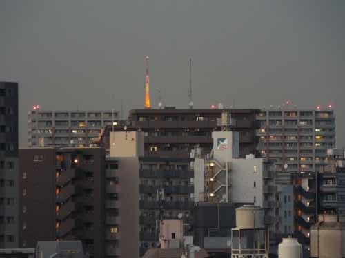 屋上から富士を見たこと_f0211178_10011867.jpg