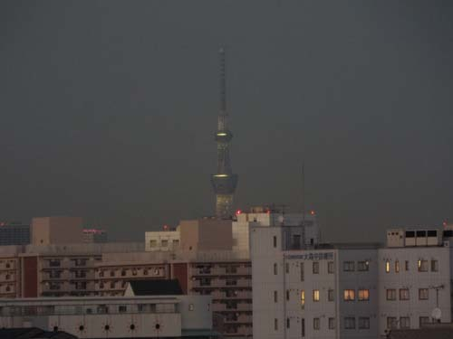 屋上から富士を見たこと_f0211178_10012738.jpg