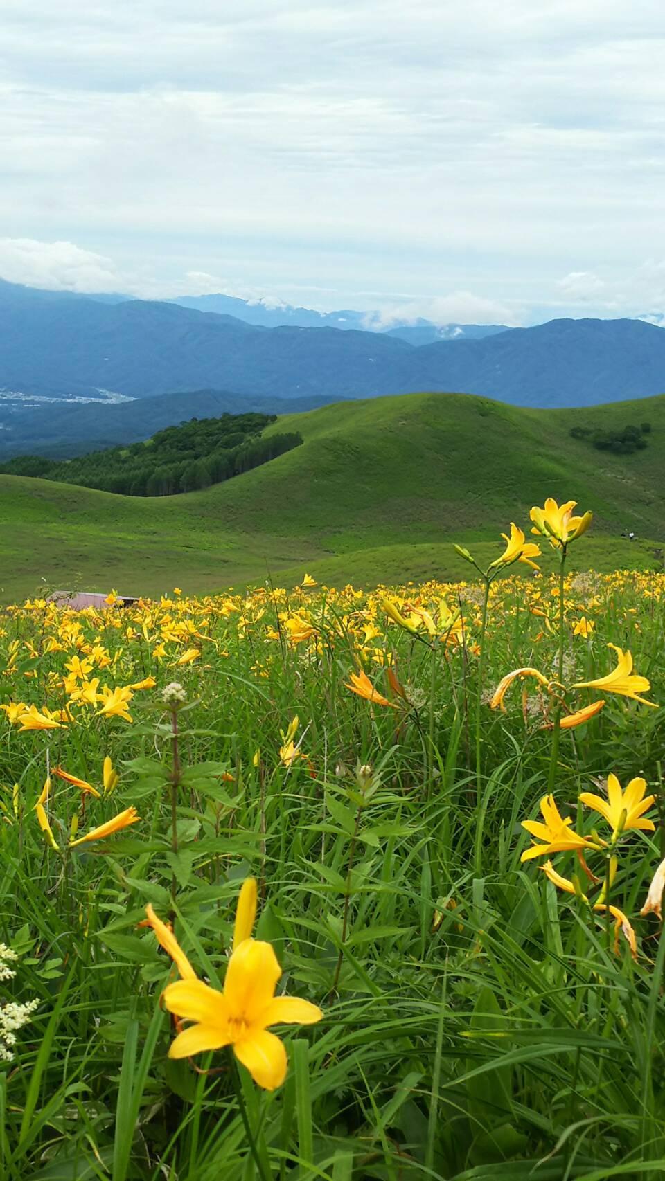 夏の高原♪_f0147585_13334831.jpg