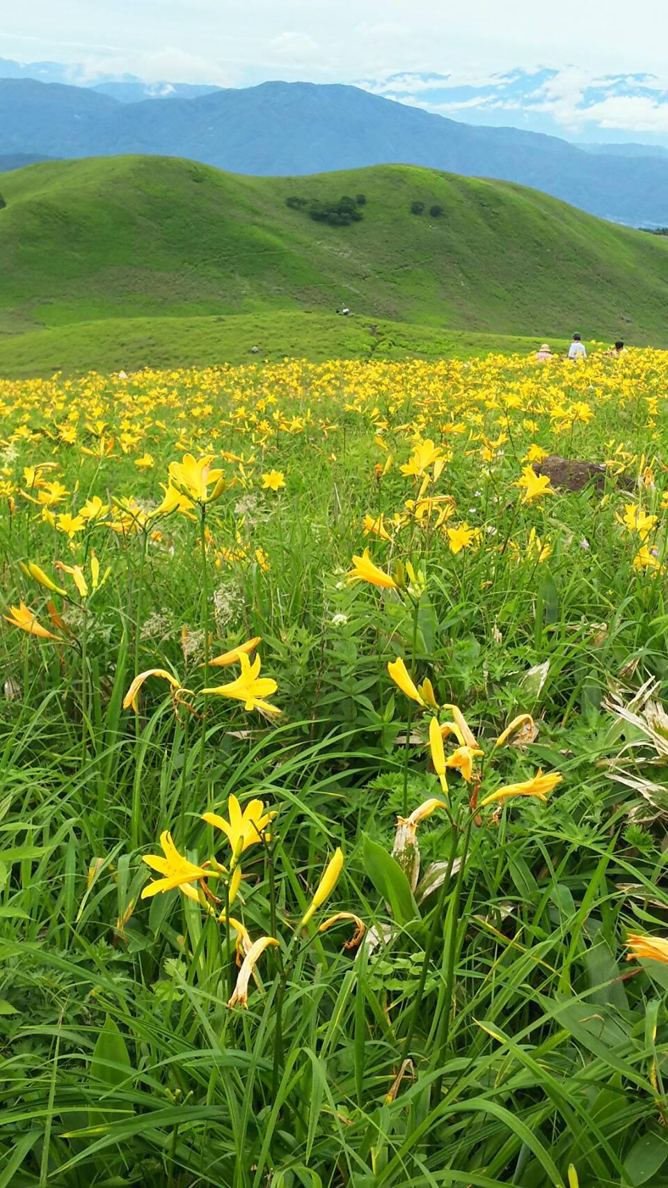 夏の高原♪_f0147585_13335715.jpg