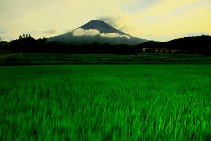 令和元年8月の富士(8)農道公園の夕暮れの富士_e0344396_20595207.jpg