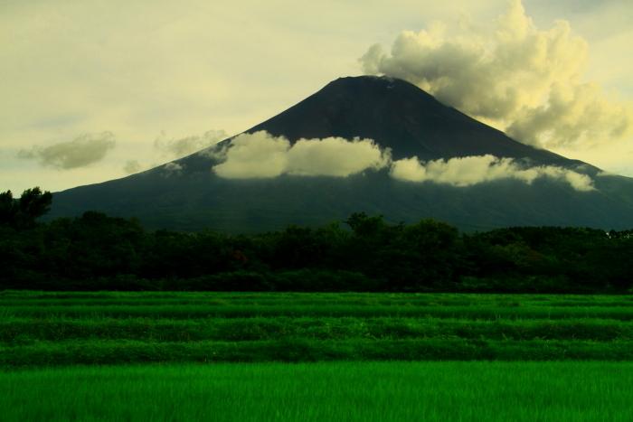 令和元年8月の富士(8)農道公園の夕暮れの富士_e0344396_21000510.jpg