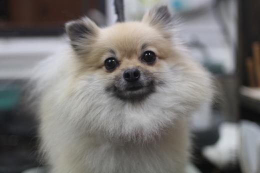 お泊まりブログ!!_b0130018_21161737.jpg