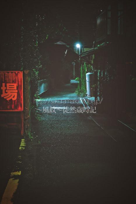 夏の夜道。_f0235723_19192273.jpg