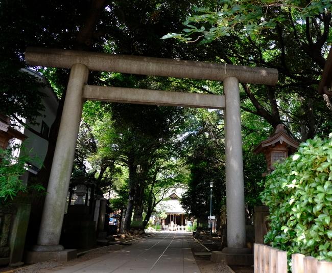 「ときわ台 天祖神社の歌占い」_a0000029_20512149.jpg