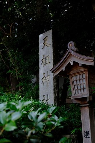 「ときわ台 天祖神社の歌占い」_a0000029_20513120.jpg