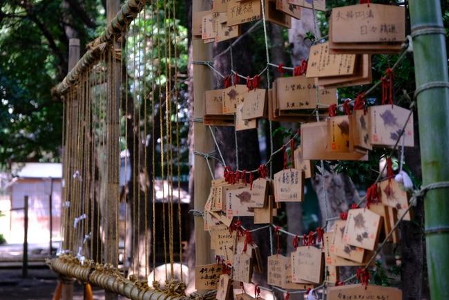 「ときわ台 天祖神社の歌占い」_a0000029_21175619.jpg
