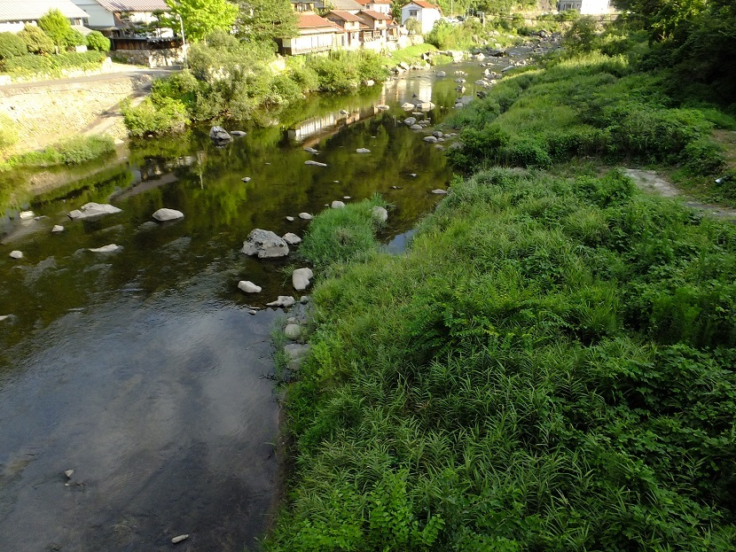 斐伊川沿い_e0193247_18013886.jpg