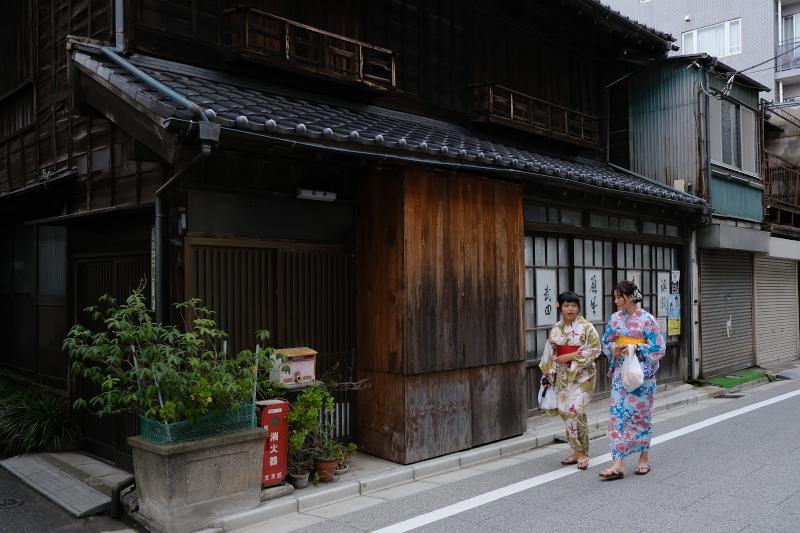 東京の坂道 #37-2 根津神社参道_f0079061_19015292.jpg