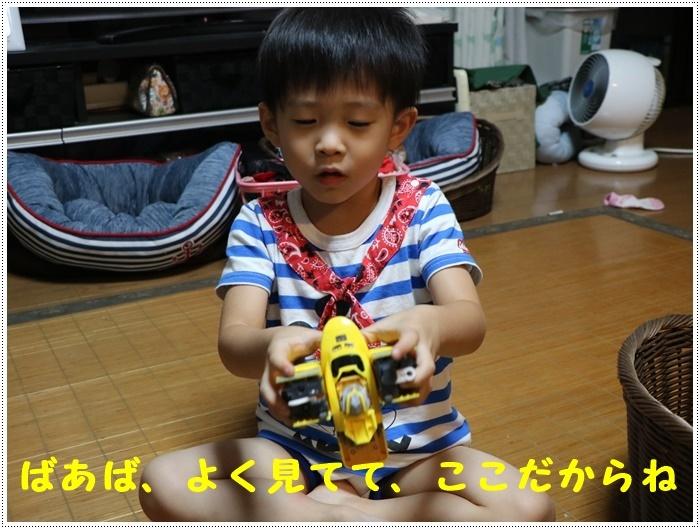 b0175688_21501071.jpg