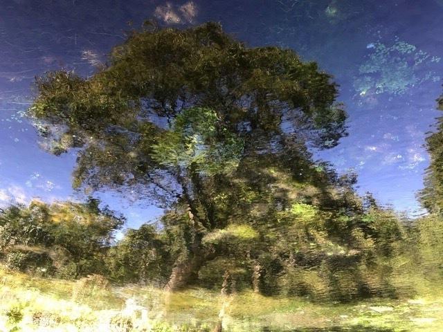静と動、今日はめっちゃ久しぶりに静の日としました_b0391788_19080200.jpeg