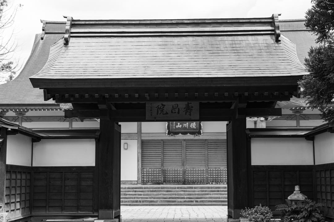 禅林街(泉光院~梅林寺まで、モノクロ)_a0158797_23183551.jpg