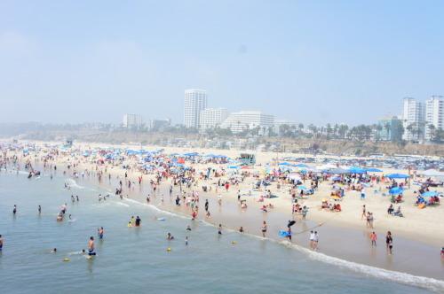 【ロサンゼルス旅行⑥ サンタモニカ】_f0215714_16315822.jpg