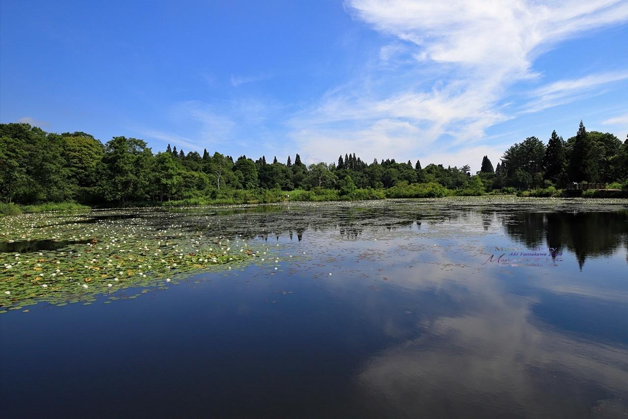 まゝに/妙高戸隠連山国立公園2 いもり池_d0342426_01442504.jpg