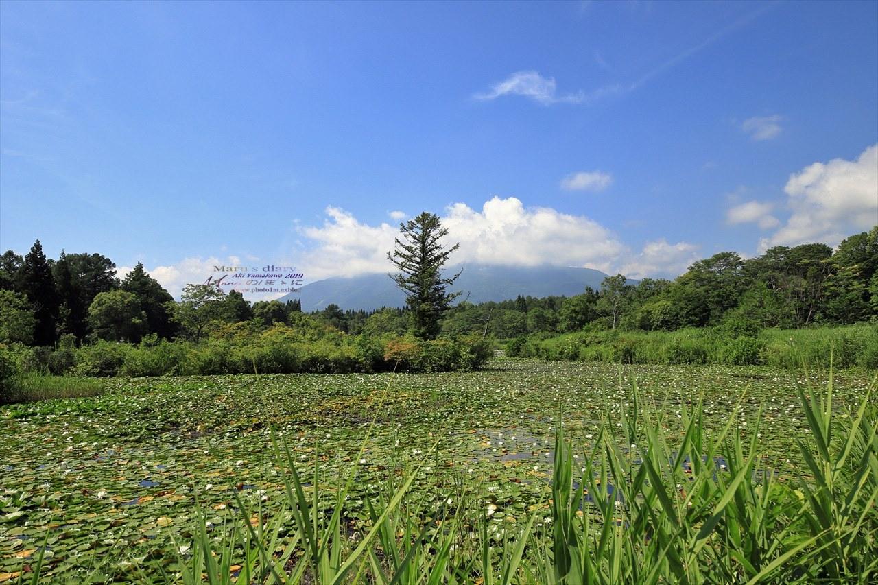 まゝに/妙高戸隠連山国立公園2 いもり池_d0342426_01442661.jpg
