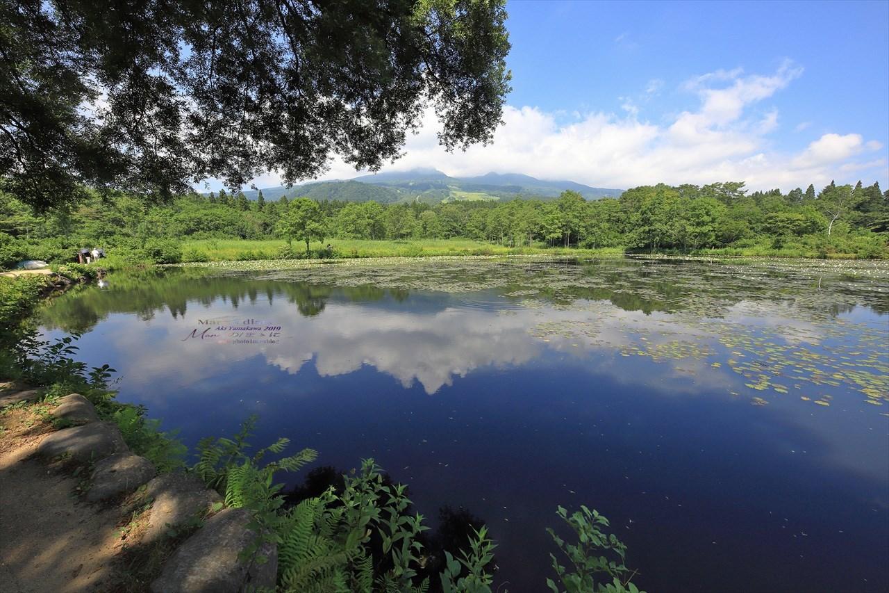 まゝに/妙高戸隠連山国立公園2 いもり池_d0342426_01454594.jpg