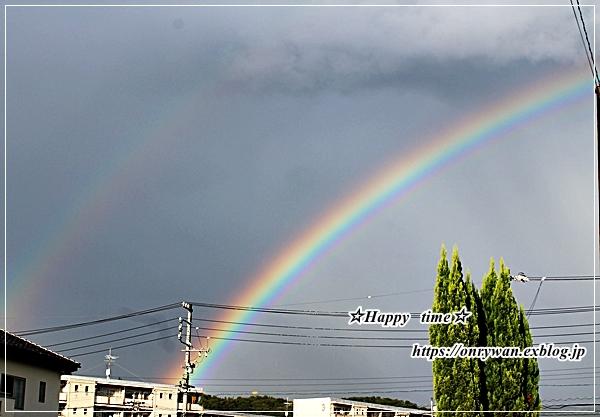今日のおうちランチと虹♪_f0348032_18202685.jpg