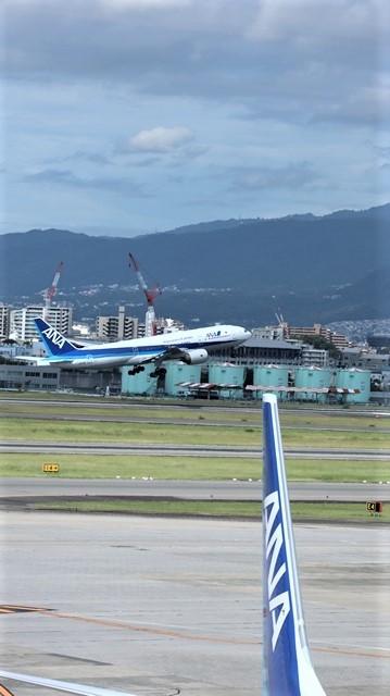 藤田八束の飛行場訪問@伊丹空港で飛び交う飛行機たち、伊丹空港のお弁当が美味し、空弁紹介_d0181492_20414026.jpg