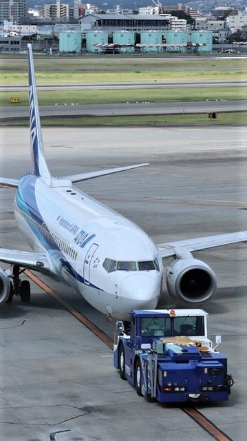 藤田八束の飛行場訪問@伊丹空港で飛び交う飛行機たち、伊丹空港のお弁当が美味し、空弁紹介_d0181492_20421414.jpg