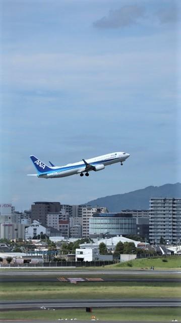 藤田八束の飛行場訪問@伊丹空港で飛び交う飛行機たち、伊丹空港のお弁当が美味し、空弁紹介_d0181492_20422261.jpg