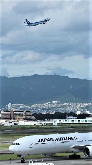 藤田八束の飛行場訪問@伊丹空港で飛び交う飛行機たち、伊丹空港のお弁当が美味し、空弁紹介_d0181492_20423029.jpg